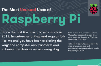 The Most Unusual Uses for the Raspberry Pi Infographic